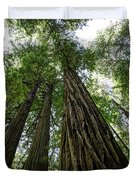 Muir Woods I Duvet Cover