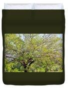 Mulberry Tree Duvet Cover