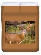 Mule Deer Duvet Cover