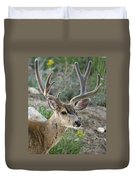 Mule Deer Buck In Velvet Duvet Cover