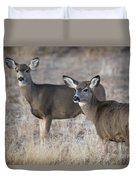 Mule Deer Does Duvet Cover