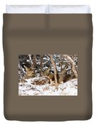 Mule Deer In Snow Duvet Cover