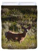 Mule Deer In Velvet   #2114 Duvet Cover