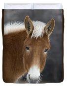Mule Duvet Cover