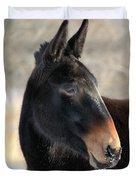 Mule Portrait 2 Duvet Cover