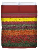 Mult-colored Tulip Field Duvet Cover