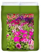 Multi-colored Blooming Petunias Background Duvet Cover