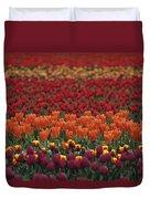 Multi-colored Tulip Fields  Duvet Cover
