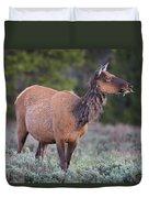 Munching Elk Grand Teton National Park Duvet Cover