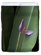 Musa Ornata - Pink Ornamental Banana Flower - Kepaniwai Maui Hawaii  Duvet Cover