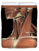 Muscles Of The Upper Chest And Neck Duvet Cover