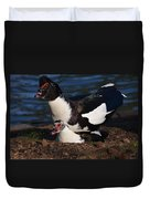 Muscovy Lovers Duvet Cover