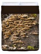 Mushroom Log Duvet Cover
