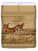 Musketeers Duvet Cover