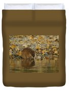 Muskrat Reflection Duvet Cover