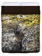 Mussels Barnacles Seaweed Closeup Duvet Cover