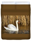 Mute Swan By Reed Beds Duvet Cover