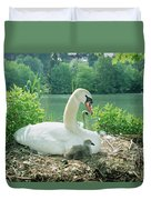 Mute Swan Parent And Chicks On Nest Duvet Cover by Konrad Wothe