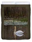 Mute Swan Pictures 143 Duvet Cover