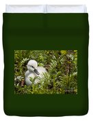 Mute Swan Pictures 210 Duvet Cover