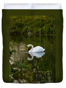 Mute Swan Pictures 85 Duvet Cover