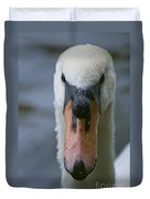Mute Swan Pictures 88 Duvet Cover
