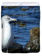 Mystic Seagull Duvet Cover