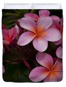 Na Lei Pua Melia O Wailua - Pink Tropical Plumeria Hawaii Duvet Cover