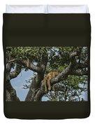 Nap Time On The Serengeti Duvet Cover