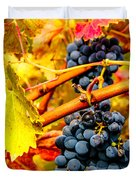 Napa Valley Grapes, California Duvet Cover