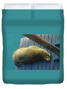 Napping Sea Lion Duvet Cover