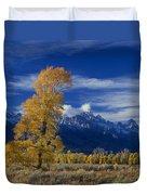 Narrowleaf Cottonwoods Fall Color Teton Duvet Cover