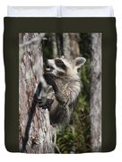 Nasty Raccoon In A Tree Duvet Cover