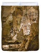 Natural Bridge Cavern - 1 Duvet Cover