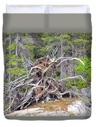 Natural Sculpture Duvet Cover