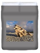Naturally Sculpted Waterworn Wood On Pebble Beach Duvet Cover