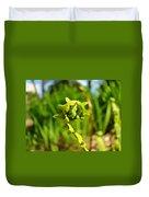 Nature Green Fern Frond Unfolding Art Prints Ferns Duvet Cover