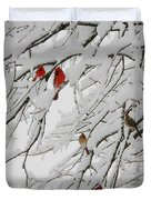 Nature's Christmas Ornaments Duvet Cover