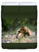 Nature's Lil Wonder Duvet Cover by Skip Willits