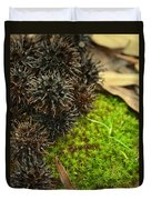 Nature's Moss And Sweetgum Pods Duvet Cover