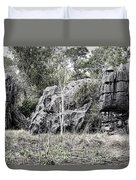 Nature's Statues  Duvet Cover