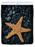 Nautical - Starfish On Black Rocks Duvet Cover