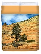 Navajo Sandstone Duvet Cover