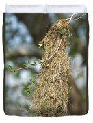 Nest Of Altamira Oriole Icterus Gularis Duvet Cover