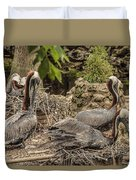 Nesting Brown Pelicans Duvet Cover