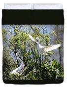 Nesting Great Egrets Duvet Cover