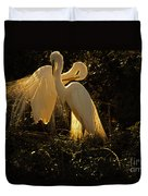 Nesting Pair Of Snowy Egrets Duvet Cover