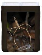 Net-casting Spider Duvet Cover
