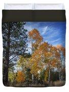 Nevada Fall Colors Duvet Cover