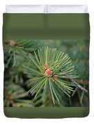New Blue Spruce Buds Duvet Cover